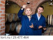 Купить «Workers taking notes wine sample», фото № 29477464, снято 19 января 2019 г. (c) Яков Филимонов / Фотобанк Лори