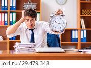 Купить «Young employee working in the office», фото № 29479348, снято 9 августа 2018 г. (c) Elnur / Фотобанк Лори