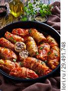 Купить «cabbage rolls stuffed with ground beef», фото № 29491748, снято 22 ноября 2018 г. (c) Oksana Zh / Фотобанк Лори
