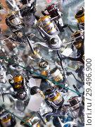 Купить «Image of stand with new baitcasting reel for rod», фото № 29496900, снято 16 января 2018 г. (c) Яков Филимонов / Фотобанк Лори