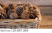 Купить «Falling snow with Christmas pine cones», видеоролик № 29497364, снято 24 февраля 2020 г. (c) Wavebreak Media / Фотобанк Лори