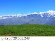 Картофельное поле на фоне горных вершин. Стоковое фото, фотограф Дмитрий Воробьев / Фотобанк Лори