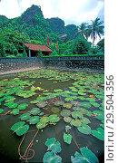 Купить «Lotus pond at Hoa Lu Temple Vietnam», фото № 29504356, снято 21 марта 2019 г. (c) age Fotostock / Фотобанк Лори