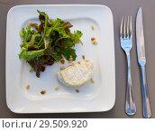 Купить «Cheese Saint Marcellin with pine nuts», фото № 29509920, снято 12 октября 2018 г. (c) Яков Филимонов / Фотобанк Лори