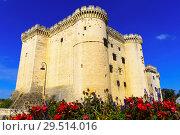 Купить «Chateau de Tarascon, France», фото № 29514016, снято 13 октября 2018 г. (c) Яков Филимонов / Фотобанк Лори