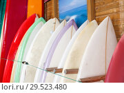 Купить «Boards for surfing and stand up paddle boarding for rent in surf club», фото № 29523480, снято 30 апреля 2018 г. (c) Яков Филимонов / Фотобанк Лори