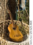 Купить «Guitar and dreamcatchers on a pine branch in the summer forest», фото № 29525464, снято 25 августа 2018 г. (c) Дмитрий Черевко / Фотобанк Лори