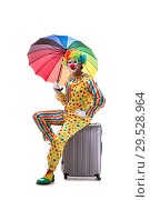 Купить «Funny clown isolated on white background», фото № 29528964, снято 28 сентября 2018 г. (c) Elnur / Фотобанк Лори
