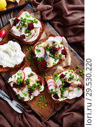 Купить «Smorrebrod with fish - danish open faced sandwich», фото № 29530220, снято 1 декабря 2018 г. (c) Oksana Zh / Фотобанк Лори