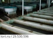 Купить «Tanks and incubators on fish farm», фото № 29530596, снято 4 февраля 2018 г. (c) Яков Филимонов / Фотобанк Лори