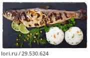 Купить «Deliciously baked whole trout with rice, served with lemon and greens», фото № 29530624, снято 15 декабря 2018 г. (c) Яков Филимонов / Фотобанк Лори