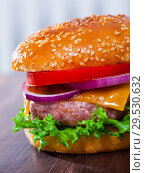 Купить «Delicious hamburger with pork patty, tomato, cheese and lettuce», фото № 29530632, снято 20 апреля 2019 г. (c) Яков Филимонов / Фотобанк Лори