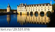 Купить «Chateau de Chenonceau, France», фото № 29531016, снято 8 октября 2018 г. (c) Яков Филимонов / Фотобанк Лори