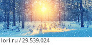 Купить «Winter landscape», фото № 29539024, снято 4 декабря 2018 г. (c) Икан Леонид / Фотобанк Лори