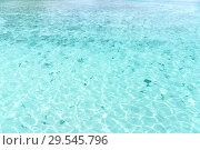 Купить «turquoise sea water of tropical lagoon», фото № 29545796, снято 16 февраля 2018 г. (c) Syda Productions / Фотобанк Лори