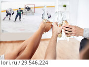 Купить «friends watching ice hockey and drinking beer», фото № 29546224, снято 14 августа 2016 г. (c) Syda Productions / Фотобанк Лори