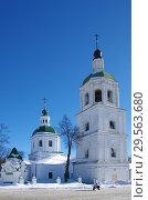 Купить «Церковь Троицы Живоначальной в Зарайске», фото № 29563680, снято 9 марта 2018 г. (c) Natalya Sidorova / Фотобанк Лори