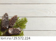 White wooden christmas background with fir branches and cones, top view, copyspace. Стоковое фото, фотограф Максим Бейков / Фотобанк Лори