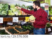 Купить «Young male seller offering cauliflowers», фото № 29576008, снято 15 ноября 2016 г. (c) Яков Филимонов / Фотобанк Лори