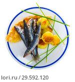 Купить «Top view of roasted sardines with potato croquettes, focaccia on blue tablecloth», фото № 29592120, снято 23 августа 2018 г. (c) Яков Филимонов / Фотобанк Лори