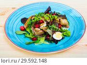 Купить «Salad of quail with greens, cranberries and honey-ginger sauce», фото № 29592148, снято 25 апреля 2019 г. (c) Яков Филимонов / Фотобанк Лори