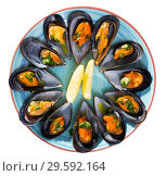 Купить «Mussels with herbs on plate», фото № 29592164, снято 25 июня 2018 г. (c) Яков Филимонов / Фотобанк Лори