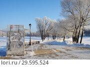 Купить «Зимний день в Царицыно, Москва», фото № 29595524, снято 17 декабря 2018 г. (c) Natalya Sidorova / Фотобанк Лори