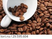Купить «Белая чашка на кофейных зернах», фото № 29595604, снято 20 января 2010 г. (c) Александр Гаценко / Фотобанк Лори