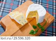 Купить «Soft blue cheese on wooden board with parsley», фото № 29596320, снято 23 июля 2019 г. (c) Яков Филимонов / Фотобанк Лори