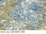 Pebble texture of clay conglomerate. Стоковое фото, фотограф Сергей Журавлев / Фотобанк Лори