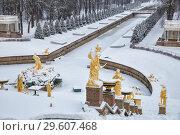 Купить «Зима в Петергофе, статуи Большого каскада, укрытые снегом», фото № 29607468, снято 22 января 2018 г. (c) Юлия Бабкина / Фотобанк Лори