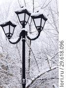 Купить «Winter snow cityscape. Vintage lantern in retro style on a background of snowy trees in cloudy weather», фото № 29618096, снято 23 декабря 2018 г. (c) Светлана Евграфова / Фотобанк Лори