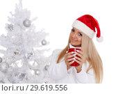 Купить «Young woman in Santa Claus cap.», фото № 29619556, снято 22 октября 2013 г. (c) Мельников Дмитрий / Фотобанк Лори