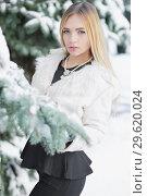 Купить «Cute young blonde posing in winter.», фото № 29620024, снято 16 января 2016 г. (c) Сергей Сухоруков / Фотобанк Лори