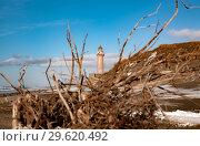 Купить «Мыс Слепиковского, остров Сахалин», фото № 29620492, снято 2 декабря 2018 г. (c) Поволкович Федор / Фотобанк Лори