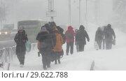 Купить «Люди идут по пешеходной дорожке во время снежного циклона», видеоролик № 29622788, снято 28 декабря 2018 г. (c) А. А. Пирагис / Фотобанк Лори