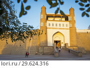 Купить «Gate, Ark, fortress, Bukhara, Uzbekistan.», фото № 29624316, снято 27 января 2020 г. (c) age Fotostock / Фотобанк Лори