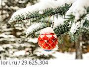 Купить «Красная новогодняя игрушка на еловой ветке . Новогодняя   праздничная концепция .», фото № 29625304, снято 23 февраля 2019 г. (c) Сергеев Валерий / Фотобанк Лори