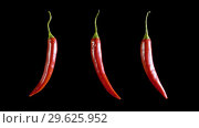 Купить «Three red hot isolated peppers rotate in the black studio», видеоролик № 29625952, снято 2 октября 2018 г. (c) Dzmitry Astapkovich / Фотобанк Лори