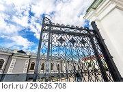 Купить «Openwork gates from forged metal», фото № 29626708, снято 10 июня 2018 г. (c) FotograFF / Фотобанк Лори
