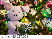 Купить «Плюшевый поросёнок на фоне новогодней ёлки», эксклюзивное фото № 29627008, снято 31 декабря 2018 г. (c) Dmitry29 / Фотобанк Лори