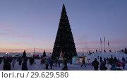 Купить «Новогодняя елка в городе Петропавловске-Камчатском, вечерний вид. Time Lapse», видеоролик № 29629580, снято 1 января 2019 г. (c) А. А. Пирагис / Фотобанк Лори