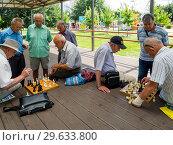 Купить «Шахматный турнир между отдыхающими в городском парке», фото № 29633800, снято 12 августа 2018 г. (c) Вячеслав Палес / Фотобанк Лори