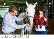 Купить «Portrait of couple standing at stable», фото № 29637452, снято 26 ноября 2018 г. (c) Яков Филимонов / Фотобанк Лори