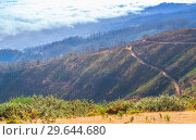 Купить «Mountain landscape of Madeira Island», фото № 29644680, снято 22 августа 2017 г. (c) EugeneSergeev / Фотобанк Лори