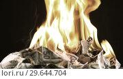 Купить «Bunch of burning fifty dollar bills rotate on a black background close-up 60fps», видеоролик № 29644704, снято 30 декабря 2018 г. (c) Алексей Кузнецов / Фотобанк Лори