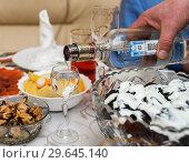 Купить «Мужчина наливает водку в рюмку за праздничным столом», эксклюзивное фото № 29645140, снято 31 декабря 2018 г. (c) Игорь Низов / Фотобанк Лори