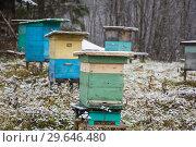 Купить «Ульи на зимнем хранении», фото № 29646480, снято 9 ноября 2018 г. (c) Яковлев Сергей / Фотобанк Лори