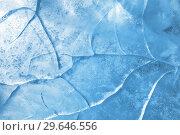 Купить «Abstract ice background», фото № 29646556, снято 5 января 2019 г. (c) Икан Леонид / Фотобанк Лори