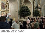 Купить «Люди слушают проповедь в Новодевичьем монастыре Москвы», эксклюзивное фото № 29647764, снято 7 января 2019 г. (c) Дмитрий Неумоин / Фотобанк Лори